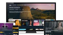 Smithsonian launches new subscription streaming service