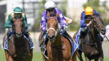 Waller has trio in Guy Walter Stakes