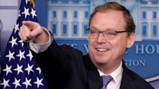 Jobs 'strong and steady' says top WH economist