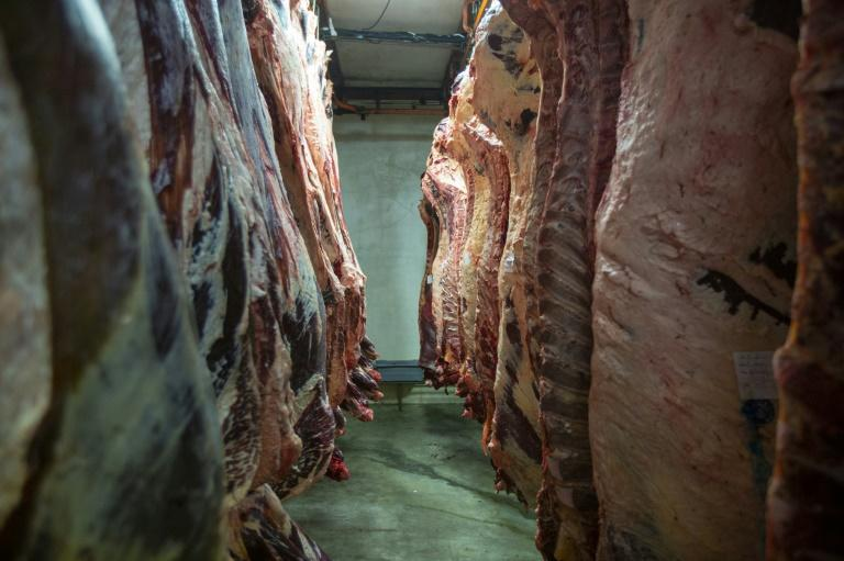 United States hails Taiwan for lifting curbs on pork, beef import