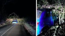 Driver has miracle escape after huge oak tree crushes car as Storm Christoph moves in
