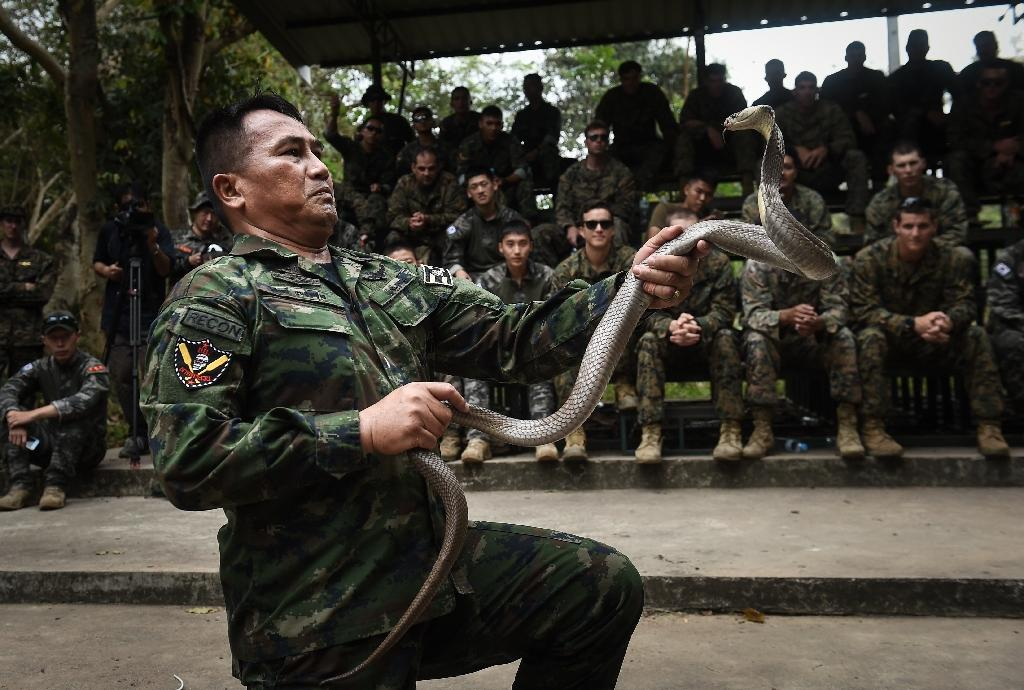 Now in its 37th year, Cobra Gold is one of the largest military exercises in Asia (AFP Photo/LILLIAN SUWANRUMPHA)