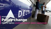 Delta Air to tighten onboard emotional support animal requirements