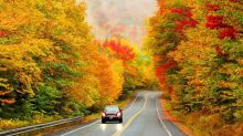 The Predictability Of Leaf Peeping Makes It The Ultimate Autumn 2020 Activity