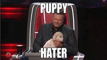 Coaches resort to mudslinging on 'The Voice': 'I want everybody at home to know I'm not a puppy hater'