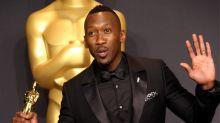 Oscars 2019: Harvard grad predicts winners with near-perfect accuracy