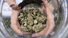 Once-counterculture 420 marijuana holiday goes mainstream
