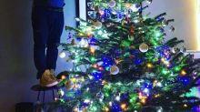 Die Weihnachtsbäume der Stars