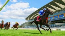 Tregoning counting on Mohaather to bring overdue glory at Goodwood