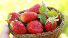 Sie haben jetzt einen Grund mehr, Erdbeeren zu essen!