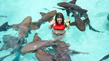 Is Gold Swimming with the Sharks