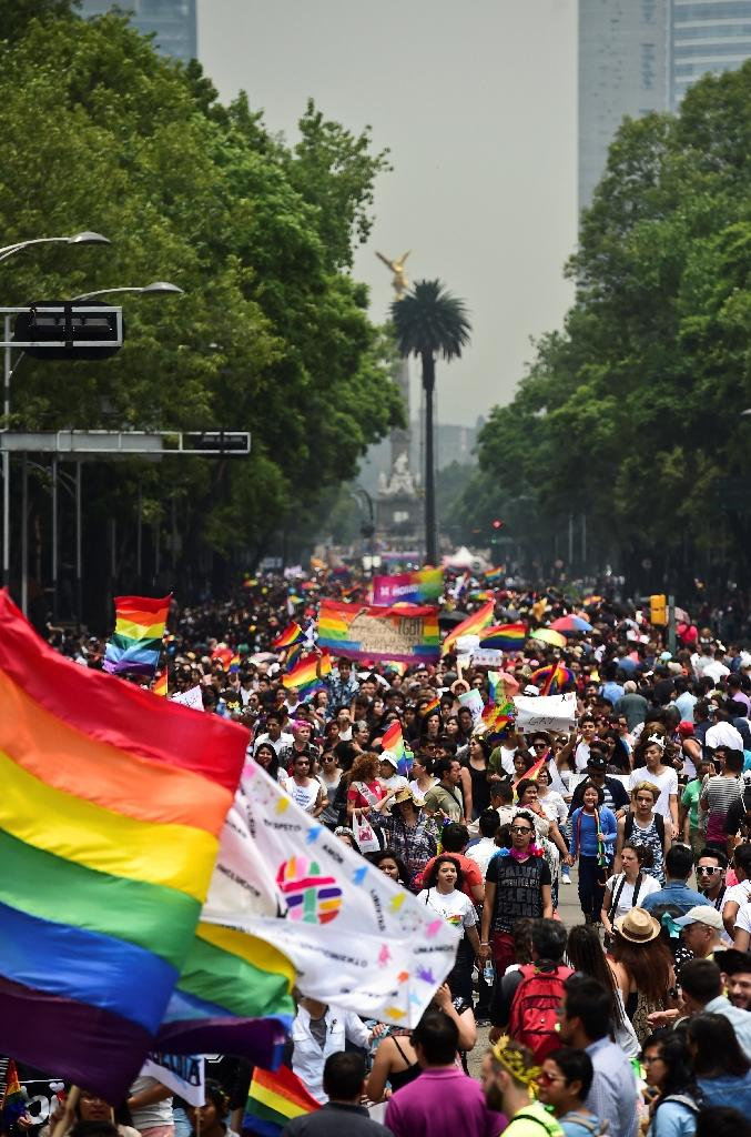 People take part in the Gay Pride Parade in Mexico City, on June 25, 2016 (AFP Photo/Ronaldo Schemidt)