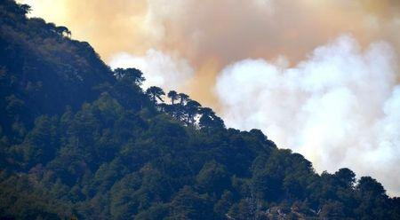 """A general view of the area of natural reserve of """"China Muerta"""" (Chinese Dead) at the Conguillio national park during a wildfire in Temuco, March 21, 2015. REUTERS/Hector Andrade"""