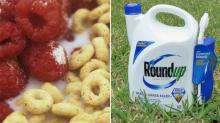Descubren que 21 cereales de desayuno contienen sustancia cancerígena