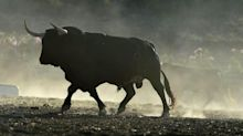 New Bull Market Begins: 2 Stocks to Buy Now