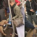 Woman savagely attacked by pit bull on busy train