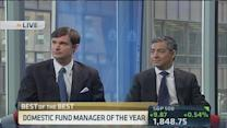 Domestic fund manager of the year