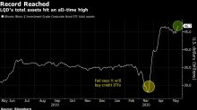 BlackRock's Biggest Credit ETF Swells to Record Amid Fed Pledge