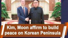 Kim, Moon affirm to build peace on Korean Peninsula