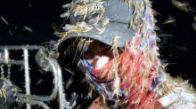 Apokalyptische Bilder: Fliegenplage in Ohio