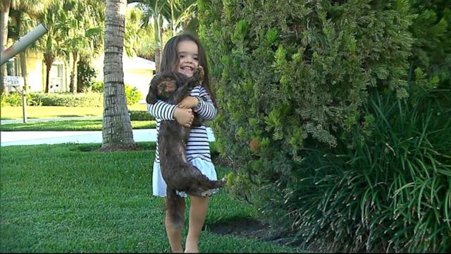 Miracle Mutt: Namath Family Dog Found After 5 Years