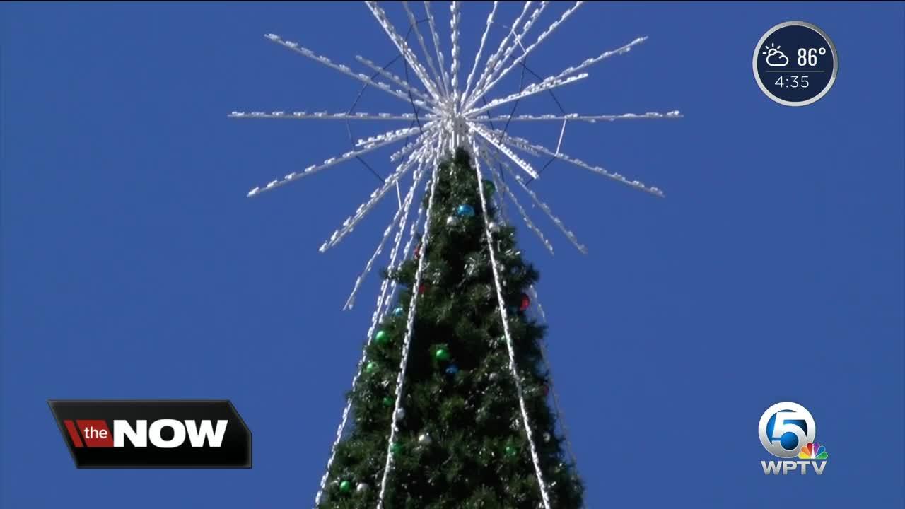 Delray Christmas Tree Lighting 2021 100 Foot Christmas Tree Installation Underway In Delray Beach