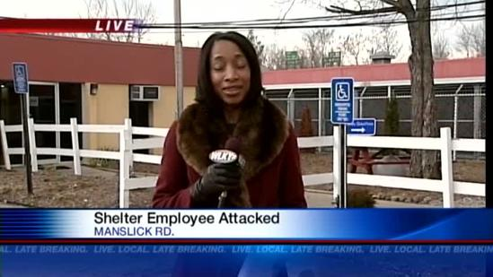 LMAS employee in good condition after pit bull attack