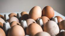 Segundo estudo, ovos podem fazer bem para o cérebro dos bebês