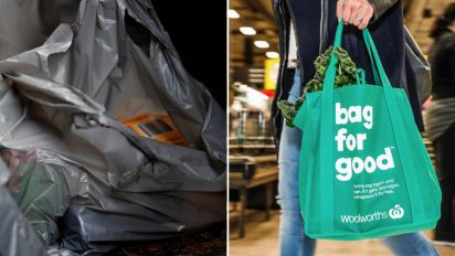 Seven questions answered about the plastic bag ban