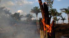Amazonas: en los últimos dos días se activaron más de 1600 nuevos incendios