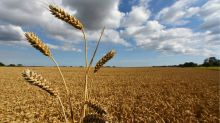 Green plans diluted as government protects farmers