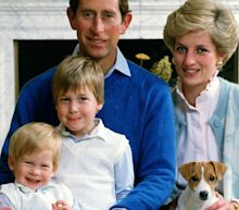 William and Harry to come together for unveiling of Diana statue