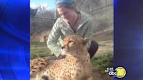 Father of lion attack victim mourns his daughter   2 of 4