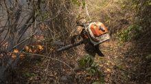 Delegado da PF que investiga incêndios no Pantanal diz que fogo 'não pode ser acidente'