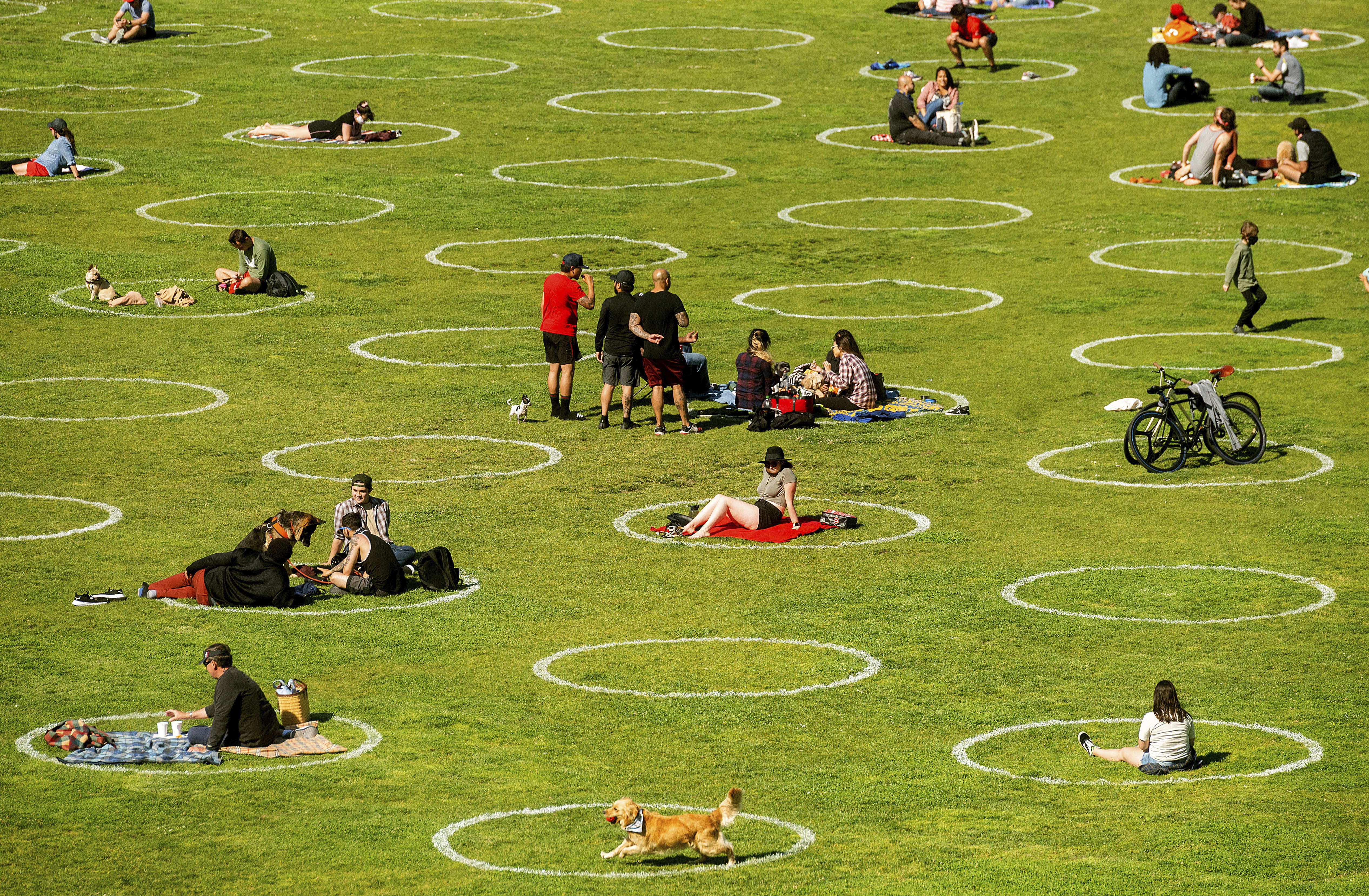 Circles designed to help prevent the spread of the coronavirus by encouraging social distancing line San Francisco's Dolores Park, Thursday, May 21, 2020. (AP Photo/Noah Berger)