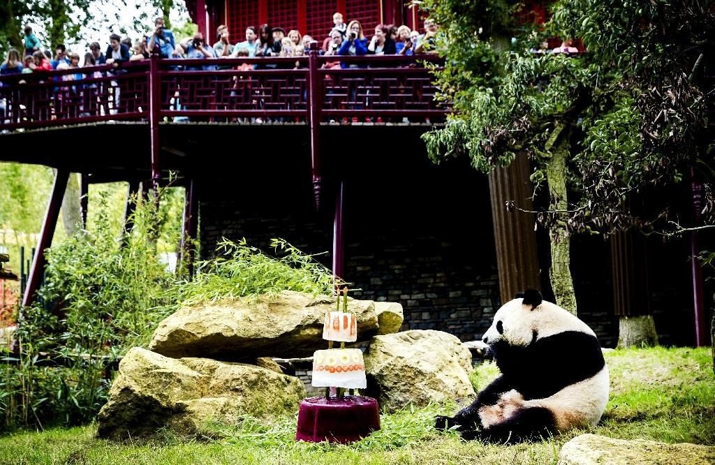 Officials decided to hold their birthday on August 8, the eighth day of the eighth month, figures which according to Chinese culture means good luck (AFP Photo/Remko DE WAAL)