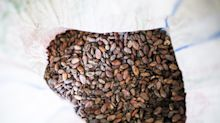 Asia's Sassoon Family of Coffee Bean Fame Shifts to Venture Debt
