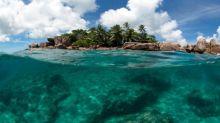IBM creating robots to clean ocean