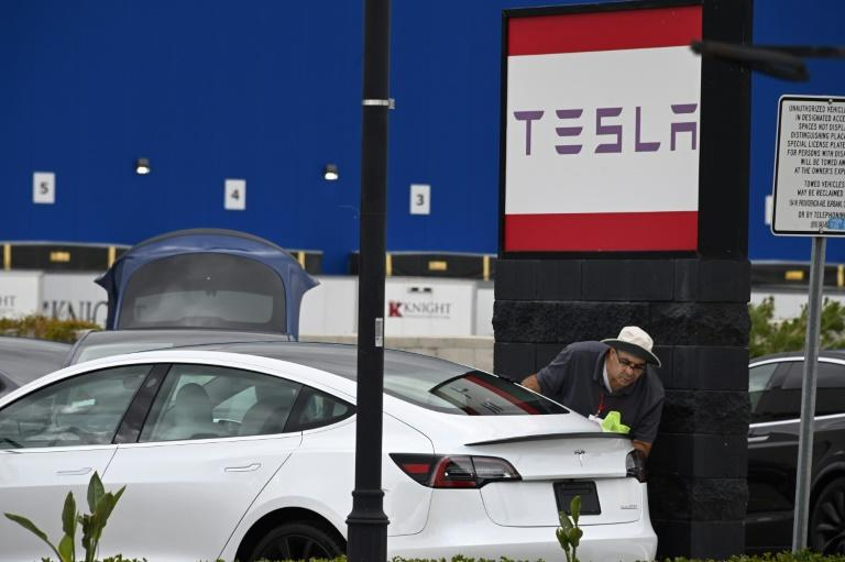 Tesla's claim it is nearing a system with full self-driving capacity, known as Level 5, was met with skepticism (AFP Photo/Robyn Beck)