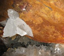 Biologists find weird cave life that may be 50,000 years old