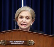 Congresswoman says Trump administration botched Capitol riot preparations