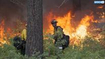 Crews Make Progress In Calming Massive Washington State Wildfire