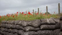 Why Do We Wear Poppies? The History Behind The Remembrance Symbol