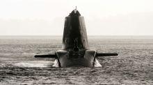 Tierschützer verscheuchen Wale wegen Militärübung aus Meeresbucht vor Schottland