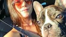 'Teen Mom' fans urge Jenelle Evans to leave David Eason after he reportedly shoots and kills her dog