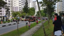 Bus driver in accident that killed boy, 6, in Choa Chu Kang had view blocked: State Coroner
