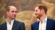 Los trapos sucios que saca a la luz el libro sobre la relación de los príncipes Guillermo y Harry