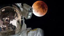 Perseverance : pourquoi les projets de la Nasa sur Mars agacent certains scientifiques