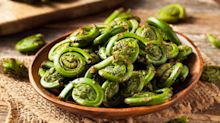 What are fiddleheads — and should you be cooking with them?
