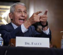 Fauci: 'There's no way' the coronavirus was made with U.S. research funds. Here's why